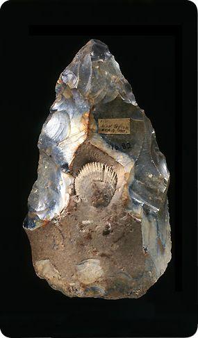 Museo de arqueología y antropología de la Universidad de Cambridge. (http://maa.cam.ac.uk/maa-highlights/britainireland/prehistoric/259/)