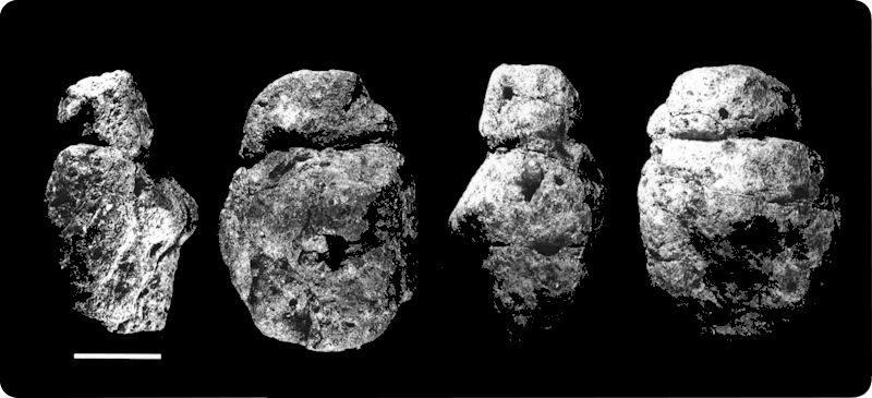 Venus de Berekhat Ram. Tomada de d'Errico, F. y Nowell, A. (2000)