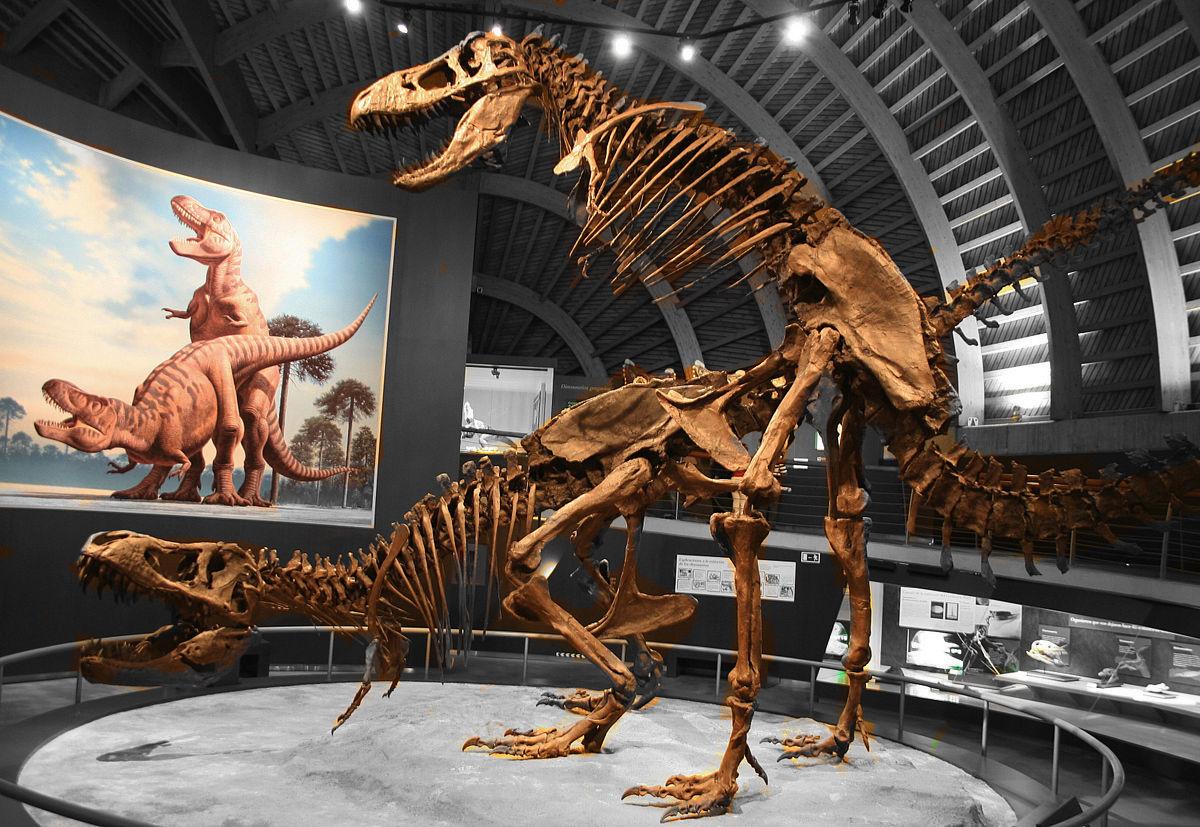 Mario Modesto «Sexo entre Tiranosaurios» Fuente: Wikimedia commons