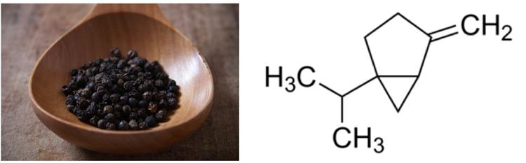 Pimienta negra y fórmula del sabineno