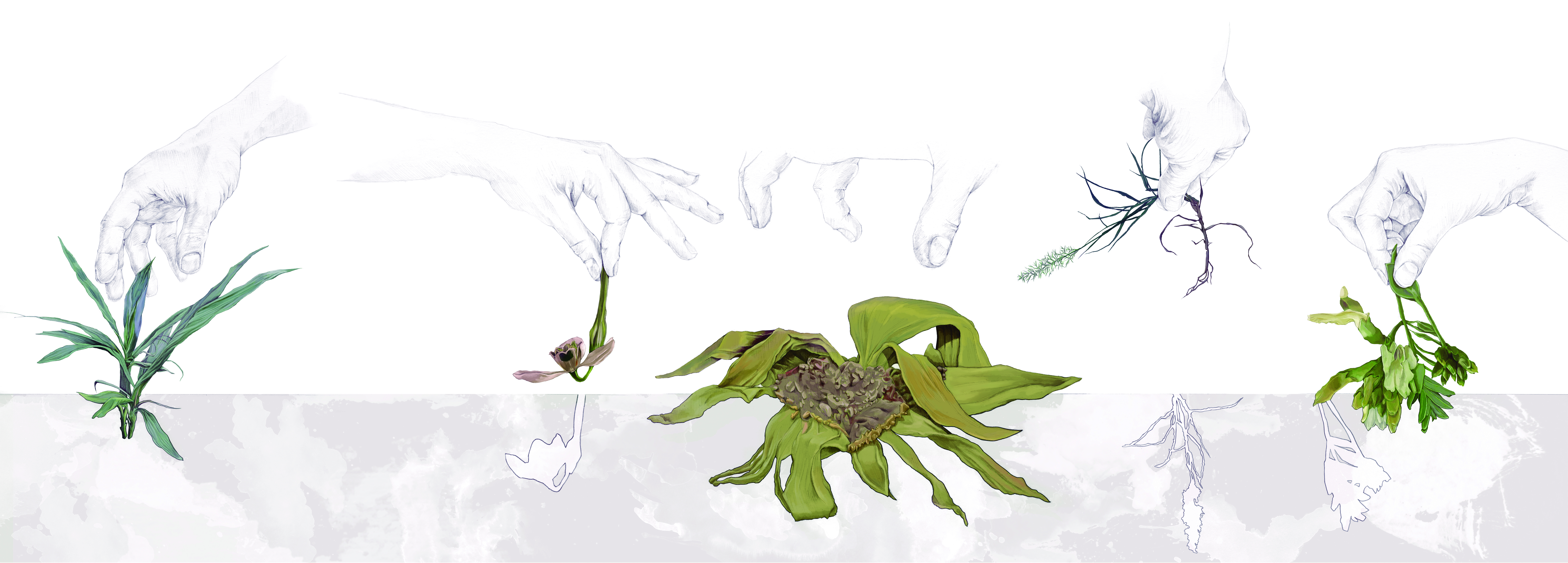 Yolanda González «Plantas amenazadas. Ilustración principal» Fuente: 'Botánica insólita'